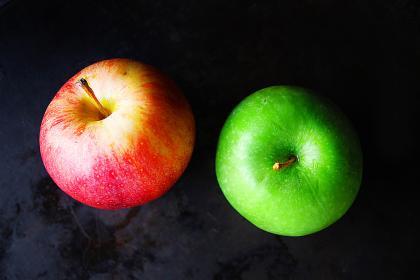 کتاب آفات و بیماری های سیب