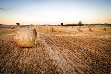کتاب اقتصاد کشاورزی